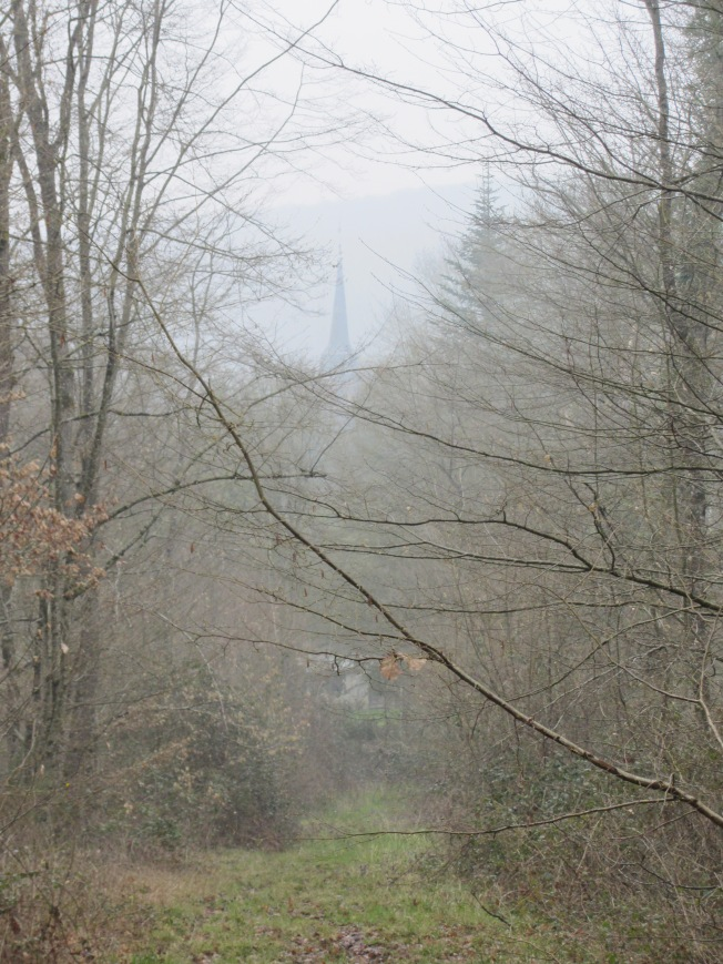 Walking through the woods at Villedomer on a misty and cold day