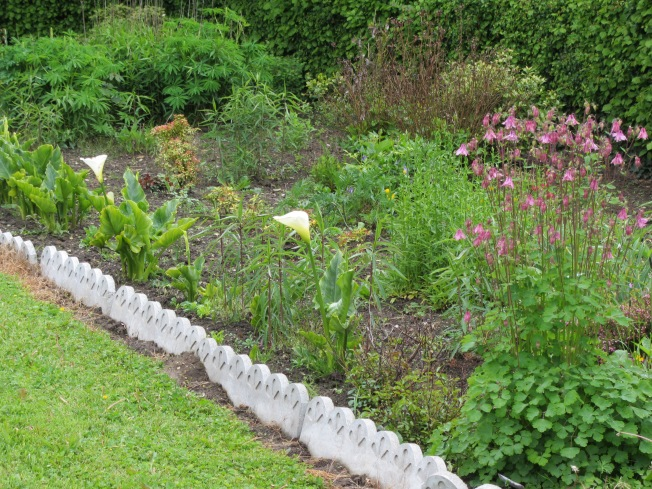 A delightful flower border at motorhome aire
