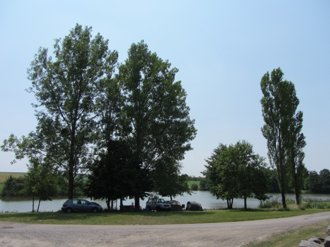 Arboretum at Cornee de Rechicourt