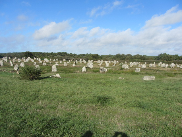 The Carnac Alignments