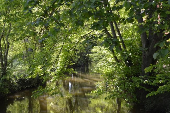 The River Loir at Vaas