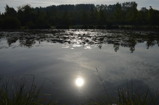 A lovely sunrise at Viviers aux Carpes campsite