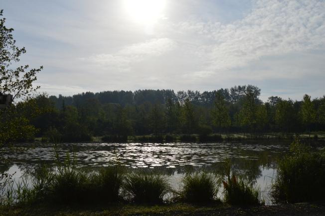 A lovely sunrise at Vivier aux Carpes campsite