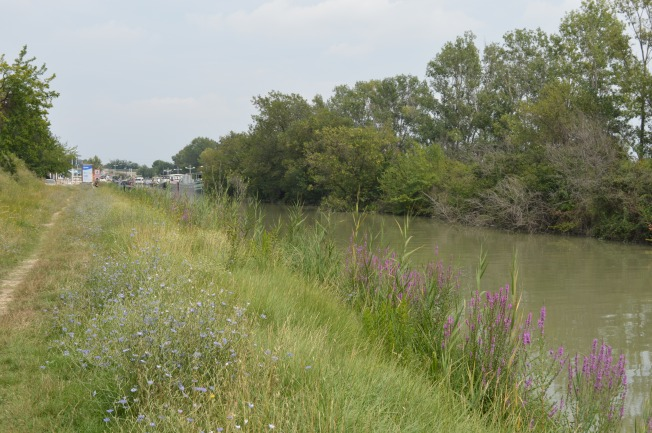 Pleasant long walk along the canal at Bellegarde