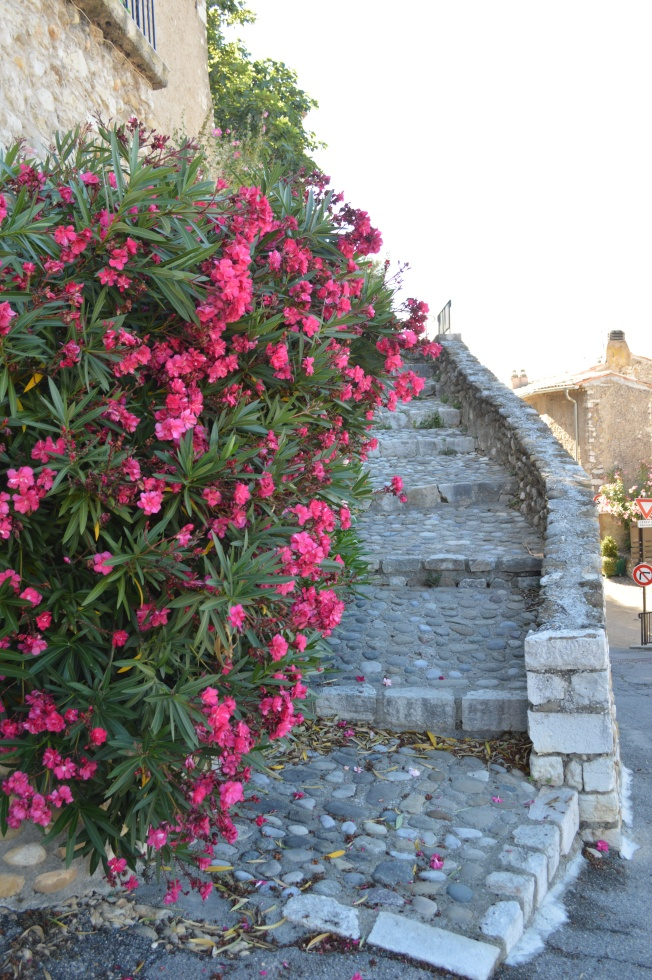 Ste Croix du Verdon 064
