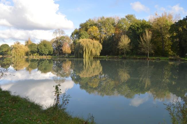 Enjoying a walk round the lake on a sunny Sunday afternoon