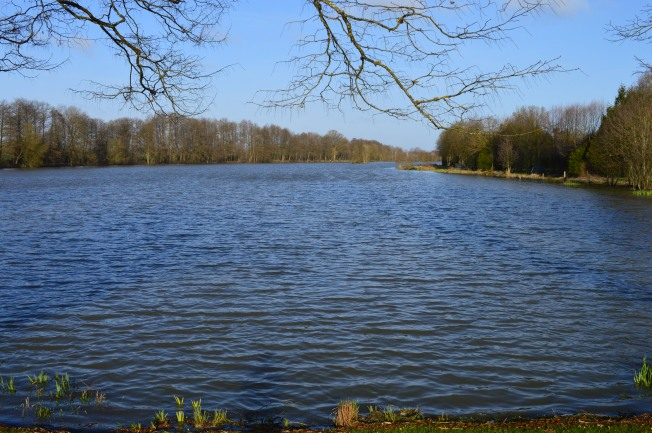 Etang Neuf from side nearest the farm house