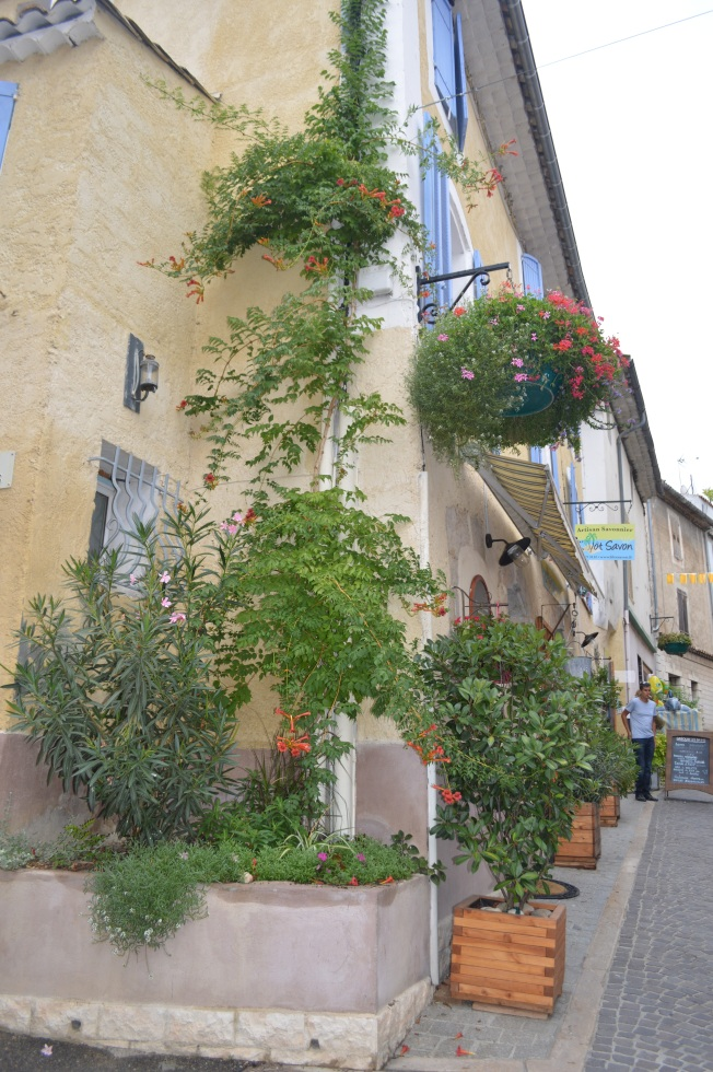 Attractive plant and flower display at Greoux-les-Bains