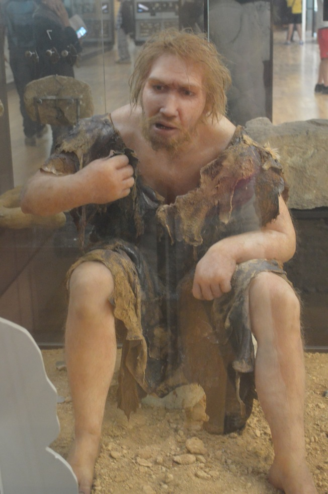 The Cro-Magnon Man in the National Prehistoric Museum