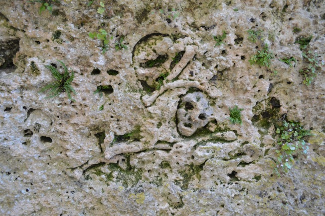 Enigmatic rock carvings on Château walls
